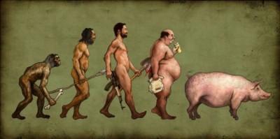 evolution_26.jpg